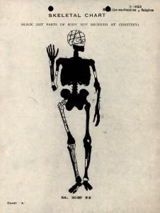 X-4013 Skeletal_chart