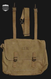 Swain bag 01 edited
